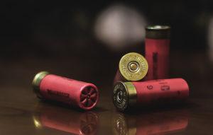 shotgun shells sitting on a wooden surface
